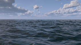 Havflyg över vågorna stock video