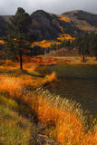 Haviland Lake. Fall colors on Haviland Lake in Colorado stock images