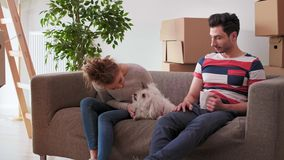 Having a break from moving house with pet. Couple having a break from moving house with pet stock video
