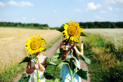 Having fun. An image of two girls hiding behind sunflowers royalty free stock photo