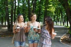 Three beautiful young boho chic stylish girls walking in park. royalty free stock image