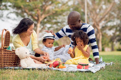 Having fun. Image of a mixed family having fun while picnicking in the park Royalty Free Stock Photos