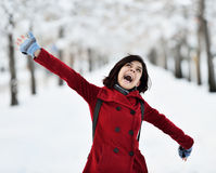 Free Having Fun In Winter Scene Royalty Free Stock Image - 48941936