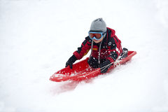 Having fun on a sled. Royalty Free Stock Photo