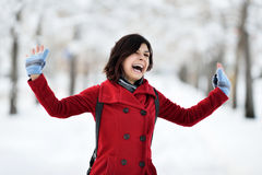 Having fun in winter scene Royalty Free Stock Images