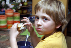 Having lunch. Young boy sitting and eating a sandwich Royalty Free Stock Photography