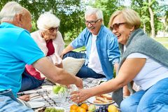 Having Picnic with Friends. Joyful group of seniors having picnic at sunny green park: they chatting animatedly with each other and enjoying fresh air royalty free stock image