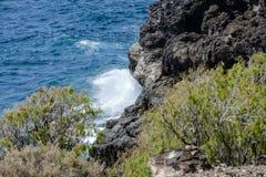 Havkusts medano Tenerife för El för sikt Royaltyfri Bild