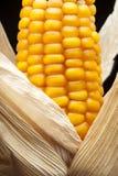 Havre makro, guling, moget som är aptitretande, mat, healt Arkivbild