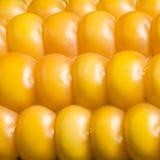 Havre makro, guling, moget som är aptitretande, mat, healt Arkivbilder