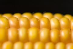 Havre makro, guling, moget som är aptitretande, mat, healt Arkivfoton