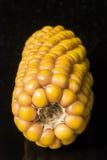 Havre makro, guling, moget som är aptitretande, mat, sunt äta Arkivbilder