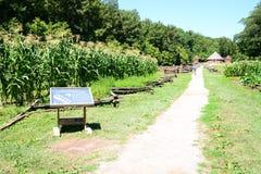 Havrefält på Washington ` s Mount Vernon arkivbilder