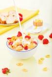 havreflakes mjölkar jordgubbar arkivfoto