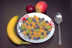 Havreflingor med frukt arkivbilder