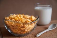Havreflingor med koppen av mjölkar Royaltyfri Foto