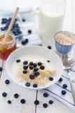 Havregröt med nya blåbär fotografering för bildbyråer