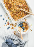 Havregranola med det pecannötmuttrar, yoghurt och blåbäret i bunke royaltyfria foton