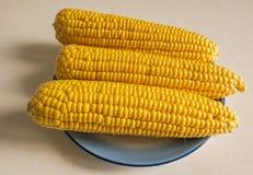 Havremajskolvar ligger i en platta på tabellen, vegetarisk mat arkivbild