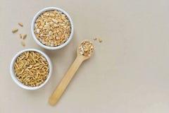 Havremjöl i en träsked och hela korn av havre royaltyfria foton