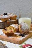 Havremuffin med den svarta vinbäret på en bitande träbakgrund stekhett hemlagat sund mat Arkivfoto