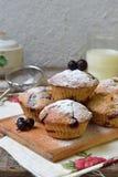 Havremuffin med den svarta vinbäret på en bitande träbakgrund stekhett hemlagat sund mat Arkivbilder