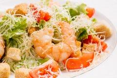 Havs- caesar sallad med räkor, salladblad, parmesanost a royaltyfri fotografi