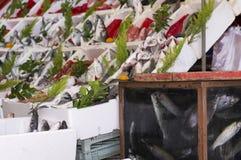 Havs- gata-handel Arkivfoto