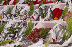 Havs- gata-handel Arkivbilder