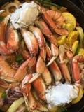 Havs- matställe i process av danande Fotografering för Bildbyråer