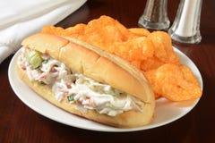 Havs- smörgås och chiper Arkivbild
