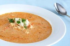 havs- soup Arkivfoton
