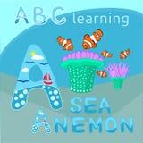 Havsanemon och clownfishesvektor, tropiskt diagram för vektor för varelser för hav för tecknad film för illustration för tema för stock illustrationer