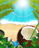 Havsbakgrund med palmträd och kokosnötcoctailen Royaltyfri Foto
