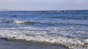 Havsbränning och stränder och en flock av seagulls stock video