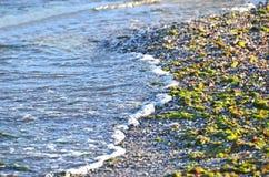 Havsbränningen vinkar Fotografering för Bildbyråer