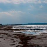 Havsbrilliancy arkivbilder
