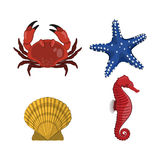 Havsdjur Teckning av krabban, stjärnan, seahorsen och skalet på vit bakgrund Fotografering för Bildbyråer