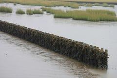 Havsförsvar Arkivbild