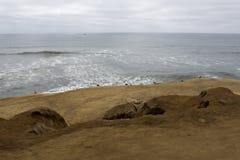 Havsfiskmåsar vilar på den öde stranden på cloudyudag Arkivbild