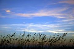 Havshavre på solnedgången med Whispy moln Arkivfoton