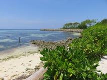 Havsikt från stranden, Maafushi, Maldiverna Royaltyfria Foton
