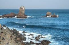 Havsikt på Seopjikoji, Jeju ö Royaltyfri Foto