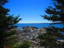 Havsikten från en stenig kust mellan två sörjer träd royaltyfri fotografi