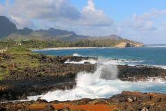 Havsikten på den Kauaian kusten Royaltyfri Bild