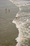 havsimmare Fotografering för Bildbyråer