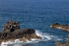 Havsklippa i Los Cancajos royaltyfri foto