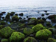 Havskust med blått vatten och skvalpat vatten Mossiga stenar på den vulkaniska stranden Arkivbild
