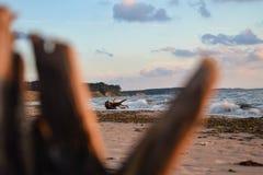 Havskust med något gammalt trä i Jurkalne Royaltyfri Fotografi