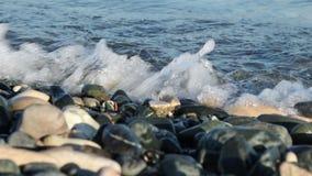 Havskusten vinkar och stenar arkivfilmer